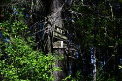 No trespassing sign in forest - stock photo