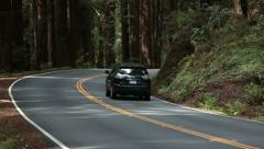 Two cars pass in redwood forest California HD - stock footage