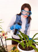 woman looking after houseplant - stock photo
