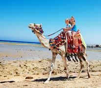 tourists riding camel  on the beach of  egypt. - stock photo