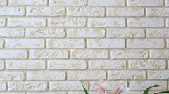 Orchid (cymbidium) on the background of a decorative brick wall. Stock Footage