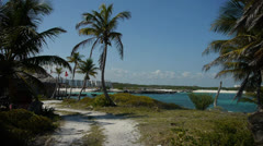 Pathway to Beach Stock Footage