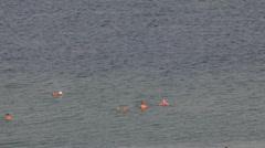 Bathing in the Dead sea 15 Stock Footage