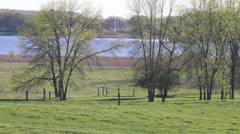 Lakeside Green Lake Stock Footage
