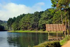 small hut near a lake on sunny day in pang ung. - stock photo