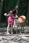 girl and sika deer 2 - stock photo