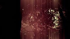 Deep Magic Forest 10 fireflies - stock footage