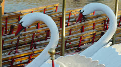 Swan Boats Close Stock Footage