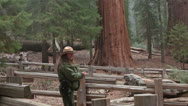 Stock Video Footage of Park Ranger ecology talk Sequoia NP Giant Redwood trees HD 6516