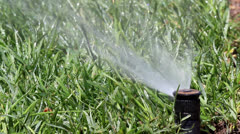 Garden irrigation sprinkler system watering Stock Footage