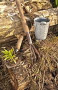 Our Rustic Garden Stock Photos