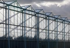 Sideview of a greenhouse with a cloudy sky Stock Photos