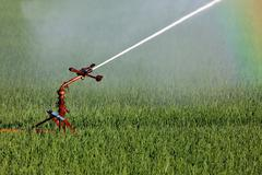 water sprinkler system irrigating land - stock photo