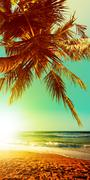 tropical beach at sunset time. vertical panoramic composition. - stock photo