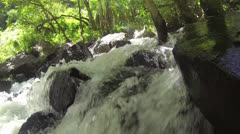 CU of water running over rocks under tropical covering Stock Footage