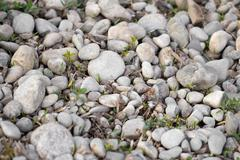 background of stone rubble in the grass - stock photo