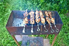 appetizing  shashlik. - stock photo