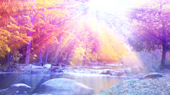 Autumn Sunlight over a river #2 - stock footage