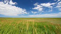 Prairie in Badlands National Park Stock Footage