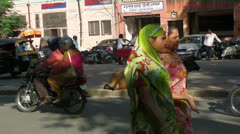 Sacred Cows in Jaipur.mp4 Stock Footage