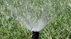 Garden irrigation spray system watering - stock footage
