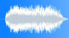 Military Radio Voice 28a - Flank Them - sound effect