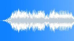 Military Radio Voice 12c - Selvä Äänitehoste
