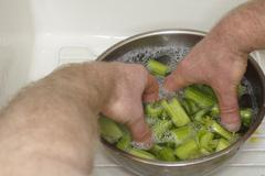 Cleaning celery Stock Photos