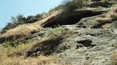 Stock Video Footage of Cave in hillside, with surrounding plants and sky