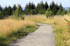 Stock Photo of nature trail