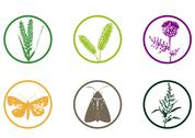 Stock Illustration of Plant & Weed Icon Set