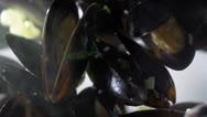 Stock Video Footage of stock footage seafood midii