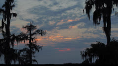 Cloud timelapse over the bayou - stock footage