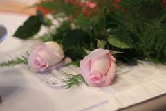 Pink roses and wedding papers Stock Photos