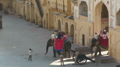 Elephants entering and Leaving Amber Fort01.mp4 Stock Footage