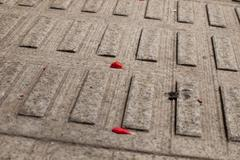 Stock Photo of paving
