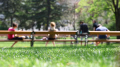 Park Scene with disabled person in wheelchair Stock Footage