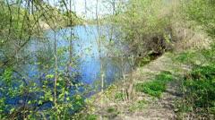 Nature scenics Rhineland - stock footage