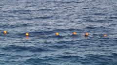 Lifebuoys in the Water Stock Footage