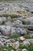 Roughy rocky terrain in sagres, portugal Stock Photos