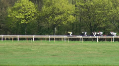 Horse Racing Stock Footage