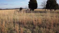Civil War Battlefield 3 Stock Footage