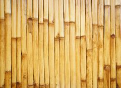 verticle bamboo fence - stock photo