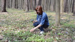 Girl collects wild flowers Stock Footage