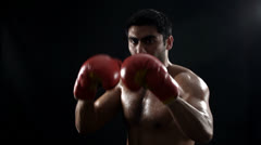 Boxer on black Stock Footage