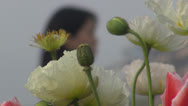 Stock Video Footage of Pedestrian passing near beautiful white poppies