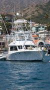 moored sportfisher yacht - stock photo
