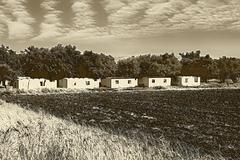sepia agricultural houses in ruins - stock illustration