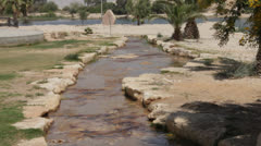 Oasis in the Negev Desert Stock Footage