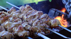 Shish Kebabs On Skewers. Stock Footage